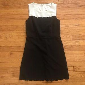 Scalloped Ann Taylor Loft Dress